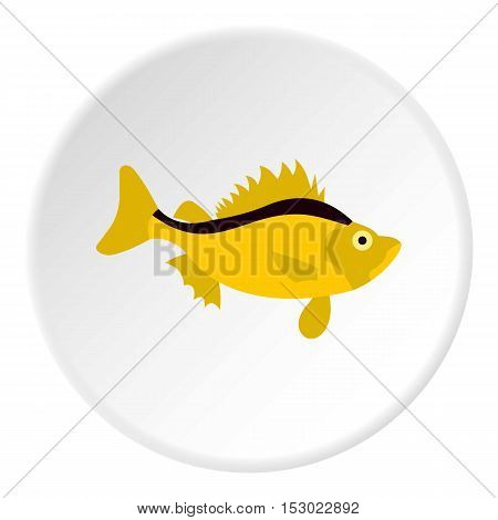 Ruff fish icon. Flat illustration of ruff fish vector icon for web