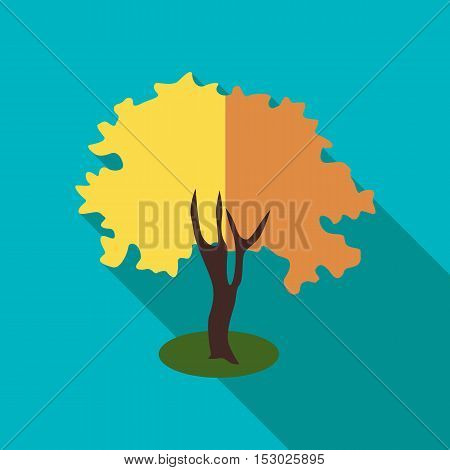 Fluffy autumn tree icon. Flat illustration of fluffy autumn tree vector icon for web