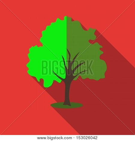 Tree with green crown icon. Flat illustration of willow tree vector icon for web