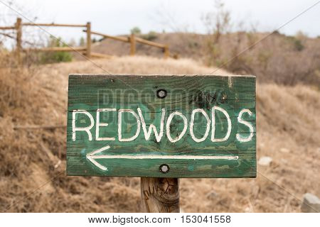 A Wooden Redwood Tree Sign with Arrow
