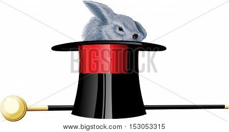 Grey rabbit in black magic hat and walking stick on white background.