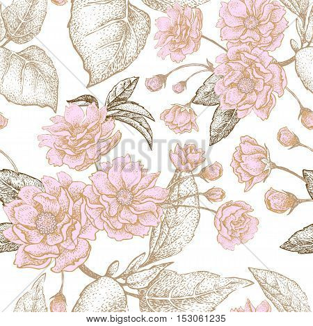 Gold embroidery on a white background. Vector illustration based on the Chinese luxury fabrics. Hand drawing of a flowering plum tree, flowers, branches and leaves. Vintage.