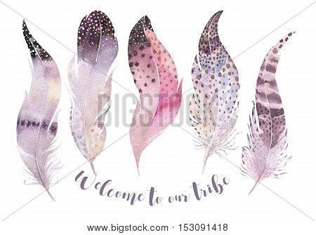 Hand drawn watercolor paintings vibrant feather set. Boho style wings. illustration isolated on white. Bird fly feathers  bohemian design. Rustic Bright colors decoration.