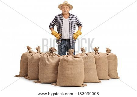 Mature farmer standing behind burlap sacks isolated on white background