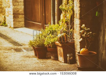 Empty street of small Tuscany town San Quirico d'Orcia in the morning fog with halloween pumpkin decorations. Romantic travel vintage hipster european italy background