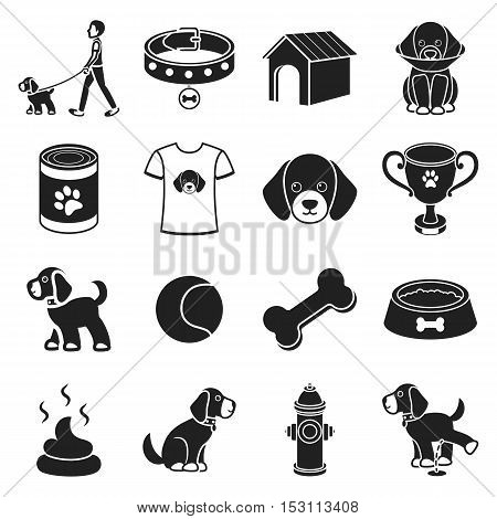 Dog equipment set icons in black style. Big collection dog equipment vector symbol stock