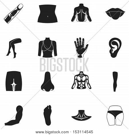 Part of body set icons in black style. Big collection part of body vector symbol stock
