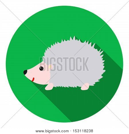 Hedgehog icon in flat style isolated on white background. Animals symbol vector illustration.