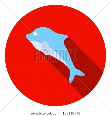 Dolphin icon in flat style isolated on white background. Animals symbol vector illustration.