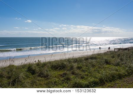 Couples walking on the beach on a bright sunny day
