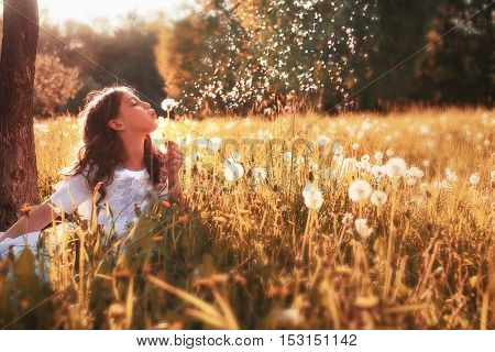 teenager on a sunny spring day walking in a park and blows away dandelion flowers