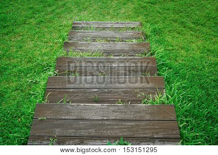 Wood Stair down to the greensward background