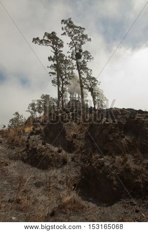 Beautiful Rinjani volcano mountain landscape seen on a trekking trip to the top.