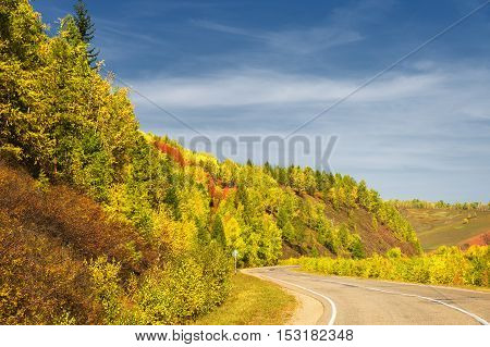 Autumn landscape. Empty asphalt road. Trees stand with yellow leaves.