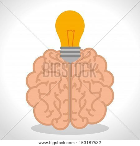 brain human organ isolated icon vector illustration design