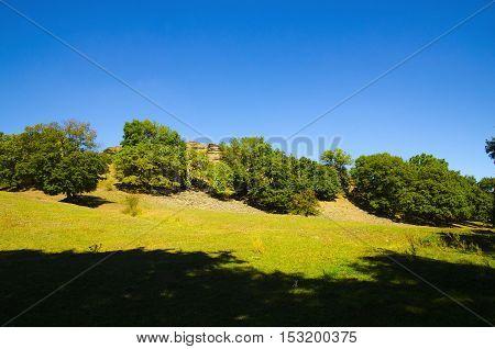 Paints early autumn day on rough terrain.