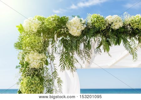 Collect flowers for the wedding arch. On the background of the sky and sea and sun.