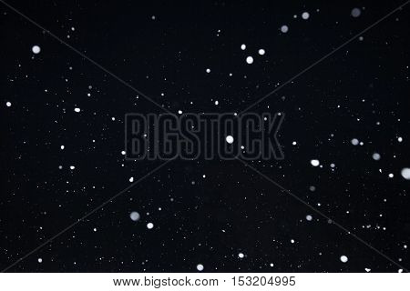 Falling snow background snowflakes on dark background in the city at night