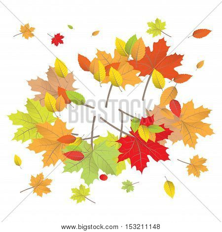 Isolated group of colored leaves Thanksgiving day vector illustration