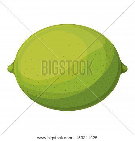 green lemon fruit healthy food over white background. vector illustration