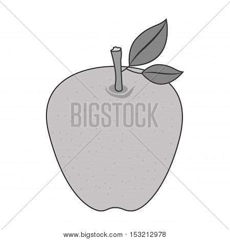 apple fruit healthy food over white background. vector illustration