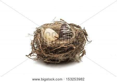 chocolate eggs in the nest isolated on a white background