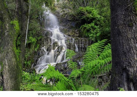 Waterfall In Cradle Mountain