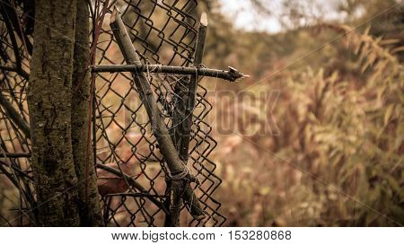 Witch vampire hallowen tied branches symbol on the fence
