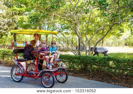 Yound dad and two little kid boys biking on bicycle in zoo. Family with active leisure and watching animals. Father and sons having fun together. Miami zoo Florida.