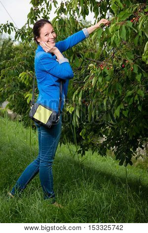 Portrait of young lady in blue jacket picking cherries