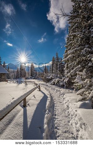 Winter Trail To Mountain Hut, Tatra Mountains, Poland