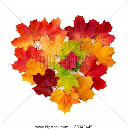 Heart from maple leaves isolated on white background. Valentine's day background.