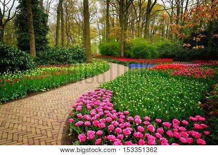 Curve of path in dutch garden Keukenhof, Netherlands, retro toned