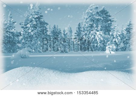 Winter landscape with snowdrifts and snow-covered forest