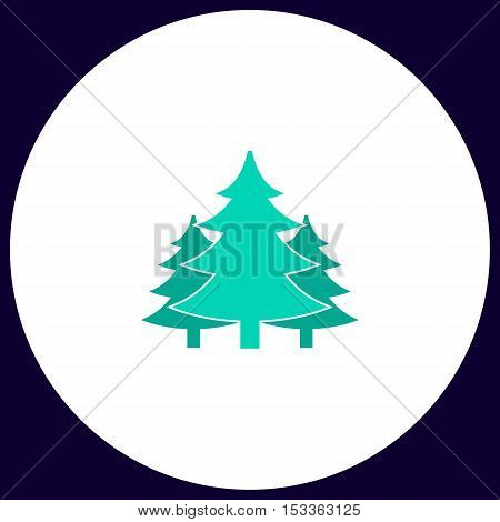 chritmas spruce Simple vector button. Illustration symbol. Color flat icon