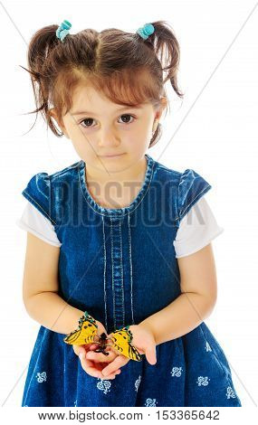 Adorable little girl with short pigtails on her head, holding a large butterfly, close-up.Isolated on white background.