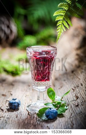 Fresh liqueur with blueberries and alcohol on old bark