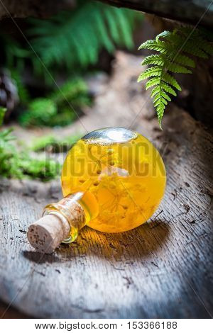 Homemade liqueur with linden and honey on old bark