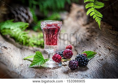 Homemade Liqueur Made Of Blackberries And Alcohol