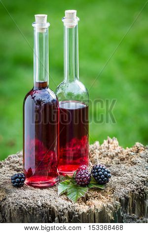 Tasty Liqueur Made Of Alcohol And Blackberries