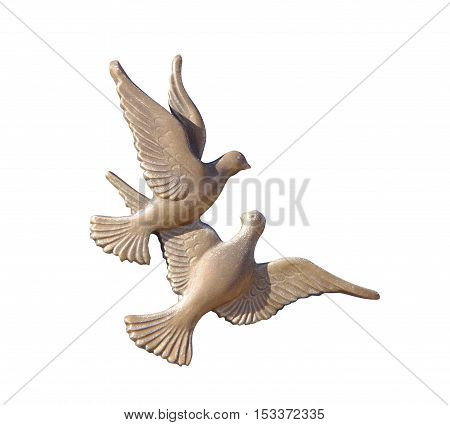 dove pigeon symbol of peace isolated on white