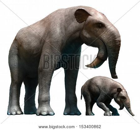 Deinotherium and calf from the Pleistocene and  Miocene eras 3D illustration
