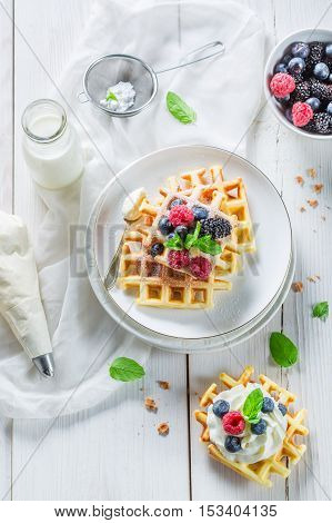 Fresh Berries With Waffels And Whipped Cream