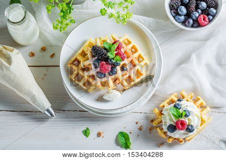 Homemade Berries With Waffels And Whipped Cream