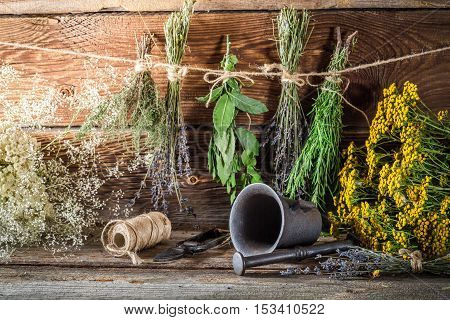 Drying Herbs For Tincture As Alternative Medicine