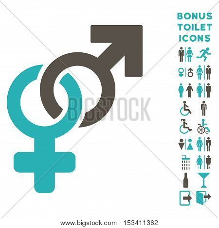 Heterosexual Symbol icon and bonus gentleman and woman toilet symbols. Vector illustration style is flat iconic bicolor symbols, grey and cyan colors, white background.