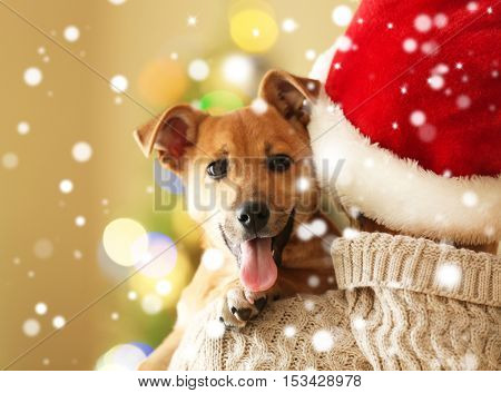 Woman in Santa hat holding cute puppy on shoulder. Snowy effect, Christmas celebration concept.