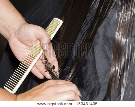 Close up view of female hairdresser hands cutting hair tips.