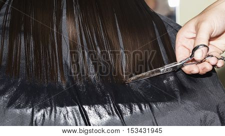 A person cutting the hair tips with scissors.