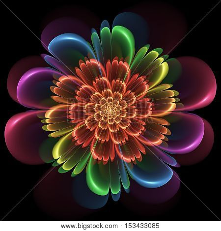 Floral Design With Whorled Spiral Petals